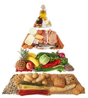 пищевая питамида