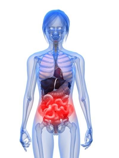 воспалительные процессы в кишечнике