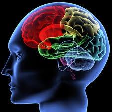 Влияние препарата на скорость психомоторной реакции