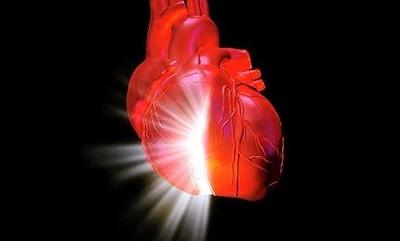 исследования сердца
