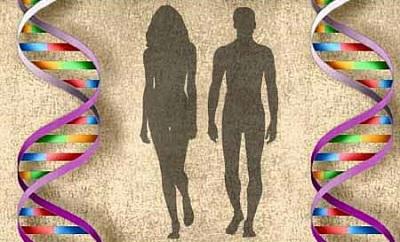 ДНК супругов